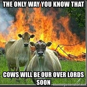 Evil Cows - the only way you know that cows will be our over lords soon
