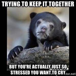 sad bear - trying to keep it together but you're actually just so stressed you want to cry