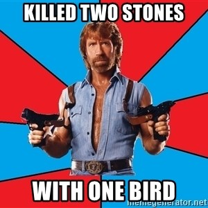 Chuck Norris  - killed two stones with one bird