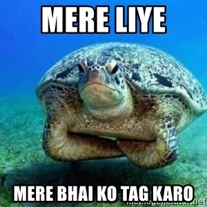 disappointed turtle - mere liye  mere bhai ko tag karo