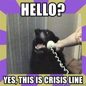 Yes, this is dog! - Hello? Yes, this is Crisis line