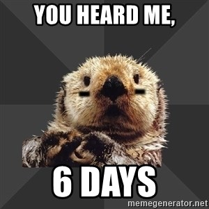 Roller Derby Otter - You heard me, 6 days