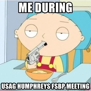Suicide Stewie - Me during USAG HUMPHREYS FSBP MEETING