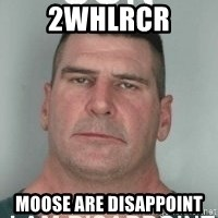 son i am disappoint - 2whlrcr moose are disappoint