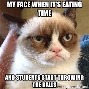 Grumpy Cat 2 - my face when it's eating time and students start throwing the balls