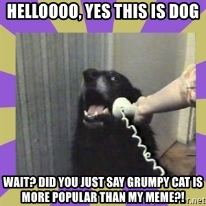 Yes, this is dog! - Helloooo, yes this is dog wait? did you just say grumpy cat is more popular than my meme?!