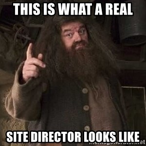 Hagrid - this is what a real site director looks like