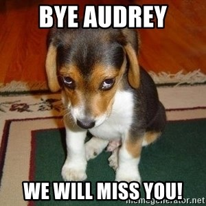 Sad Puppy - Bye Audrey We will miss you!
