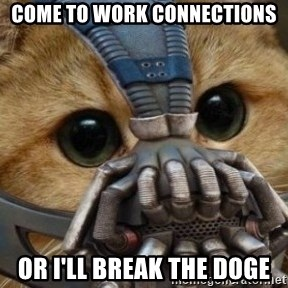 bane cat - come to work connections or i'll break the doge