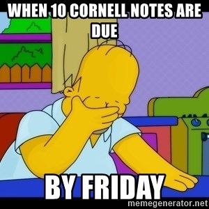 Homer Facepalm - When 10 cornell notes are due  by friday