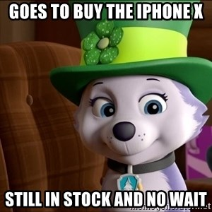 Good Luck Everest  - Goes to buy the iPhone X Still in stock and no Wait