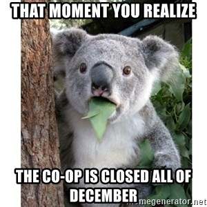 surprised koala - That moment you realize The co-op is closed All of December