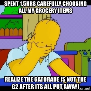 Homer Facepalm - Spent 1.5hrs carefully choosing all My Grocery items Realize the gatorade is not the g2 after its all put away!