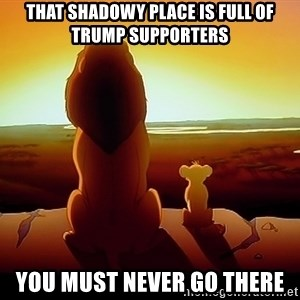simba mufasa - That shadowy place is full of truMp supporters You must never go there