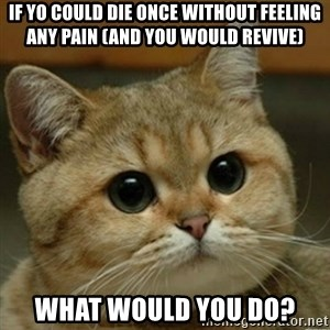 Do you think this is a motherfucking game? - If yo could die once without feeling any pain (and you would revive) What would you do?