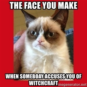 No cat - The Face you make when someboay accuses you of witchcraft