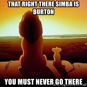 simba mufasa - That Right There simba iS burton You must never go there