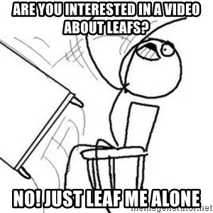 Flip table meme - Are you interested in a video about leafs? No! Just Leaf me alone