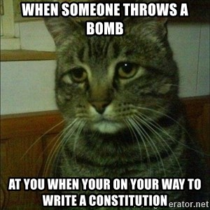 Depressed cat 2 - when someone throws a bomb at you when your on your way to write a constitution