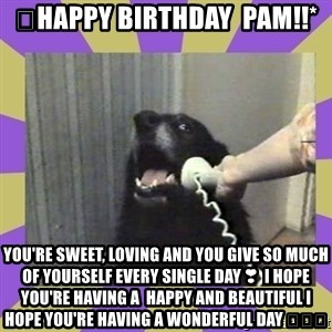 Yes, this is dog! - 🎂Happy Birthday  Pam!!* You're sweet, loving and you give so much OF yourself EVERy single day❣ I hope  you're having a  happy and beautiful I  hope YOU'RE having a wonderful day 🎈🎈🎈