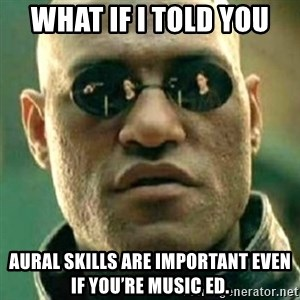 what if i told you matri - What if i tOld you AuRal skills are important even if you're music ed.