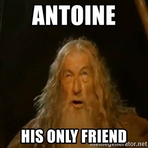 Gandalf You Shall Not Pass - antoine  his only friend