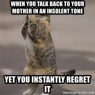 Begging Cat - When you talk Back to your mother in an insolent tone yet you instantly regret it