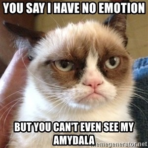 Grumpy Cat 2 - You say i have no emotion  But you can't even see my amydala