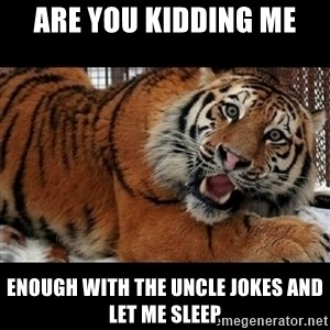 Sarcasm Tiger - Are you kidding me enough with the uncle jokes and let me sleep