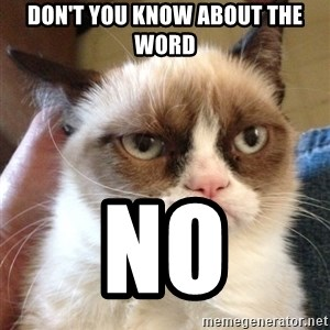 Grumpy Cat 2 - Don't you Know About the word no