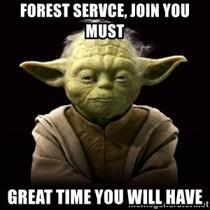 ProYodaAdvice - Forest Servce, Join you must Great time you will have