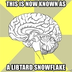 Traitor Brain - this is now known as a libtard snowflake