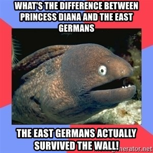 Bad Joke Eels - What's the difference between Princess diana and the east Germans the east germans actually survived the wall!