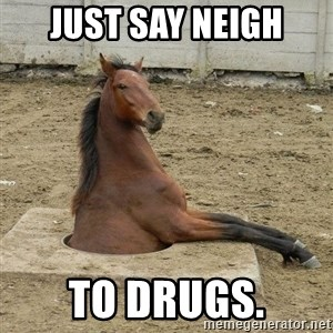 Hole Horse - just say neigh to drugs.