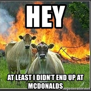 Evil Cows - Hey  At least i didn't end up at mcdonalds