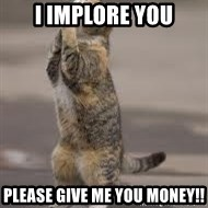 Begging Cat - i implore you please give me you money!!