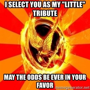"Typical fan of the hunger games - I select you as my ""little"" tribute May the odds be ever in your faVor"