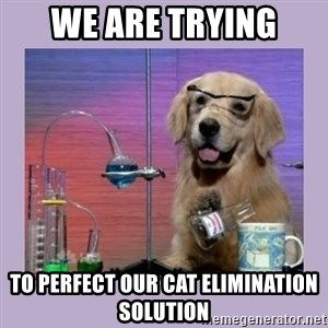 Dog Scientist - we are trying to perfect our cat elimination solution