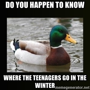 good advice duck - Do you happen to know  where the teenagers go in the winter