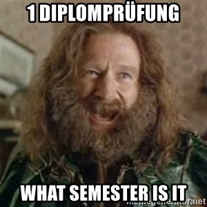 What Year - 1 Diplomprüfung what semester is it