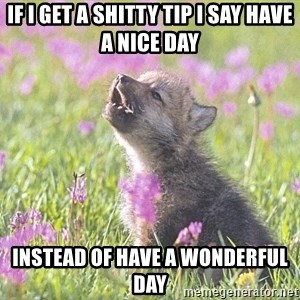 Baby Insanity Wolf - If I get a shitty tip i say have a nice day instead of have a wonderful day