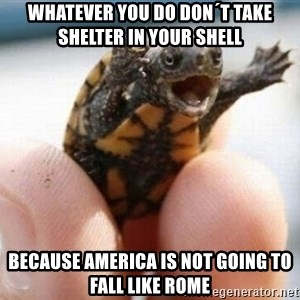 angry turtle - whatever you do don´t take shelter in your shell because America is not going to fall like rome