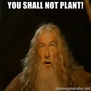 Gandalf You Shall Not Pass - you shall not plant!