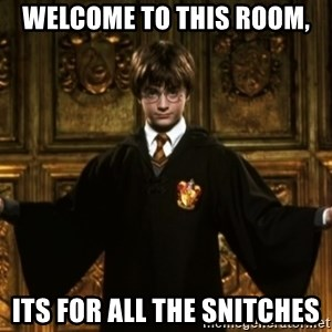 Harry Potter Come At Me Bro - Welcome to this room, Its for all the snitches