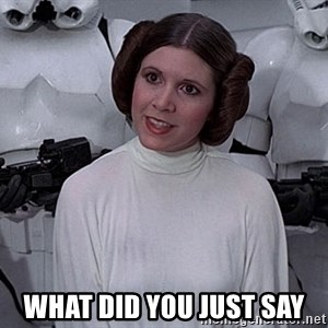 princess leia - what did you just say