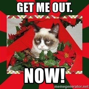 GRUMPY CAT ON CHRISTMAS - Get me out. NOW!