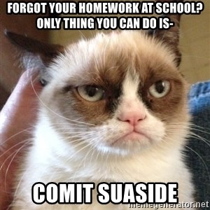 Grumpy Cat 2 - forgot your homework at school? only thing you can do is- comit suaside