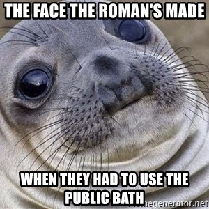 Awkward Moment Seal - The face the ROMAN'S made When they had to use the public bath