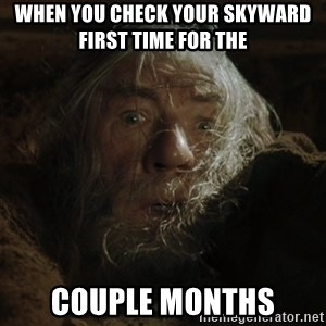 gandalf run you fools closeup - when you check your skyward first time for the  couple months