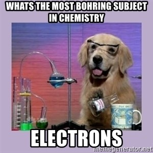 Dog Scientist - Whats the most bohring subject in chemistry electrons